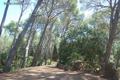 Pinar Parc Samà
