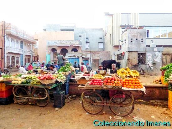 Visitar fuerte Bikaner y havelis