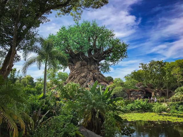 Tree of Life 2018 Disney
