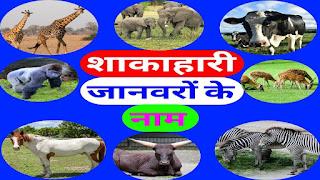 शाकाहारी-जानवरों-के-नाम