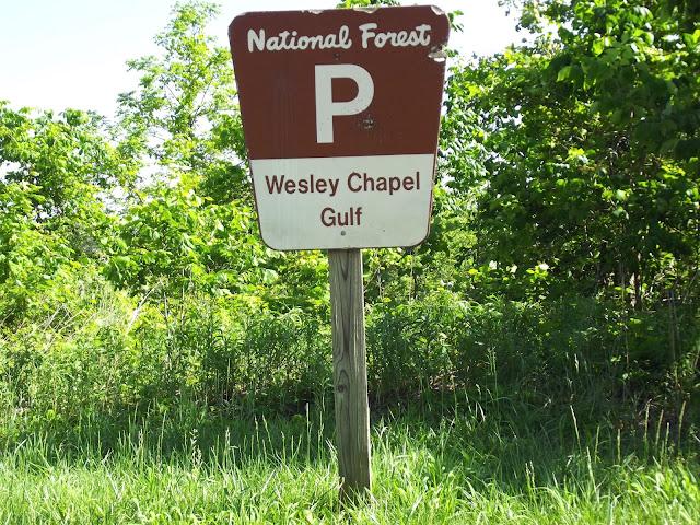 Wesley Chapel Gulf  - Lost River