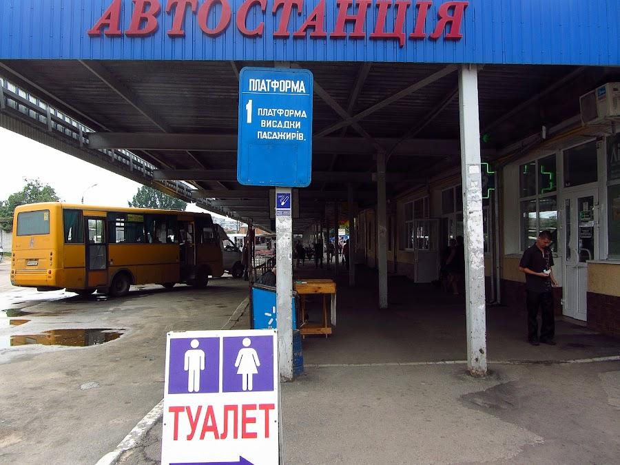 Автостанция. Житомир.