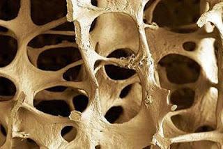osteoporoz, hormon tedavisi