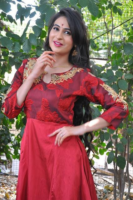 Priya Choudhary Photo In Red Long Dress