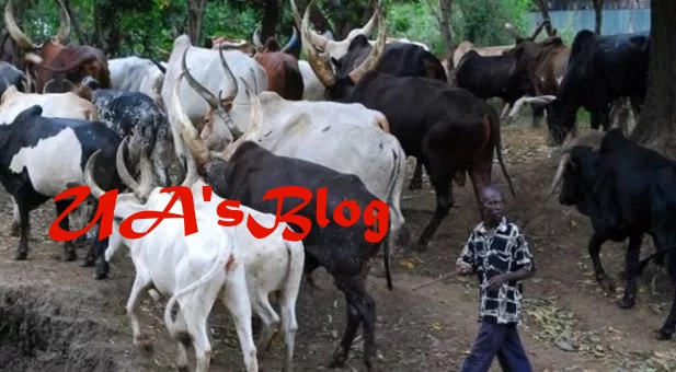 Fulani Herdsmen And Farmers In Enugu Strike Peace Deal