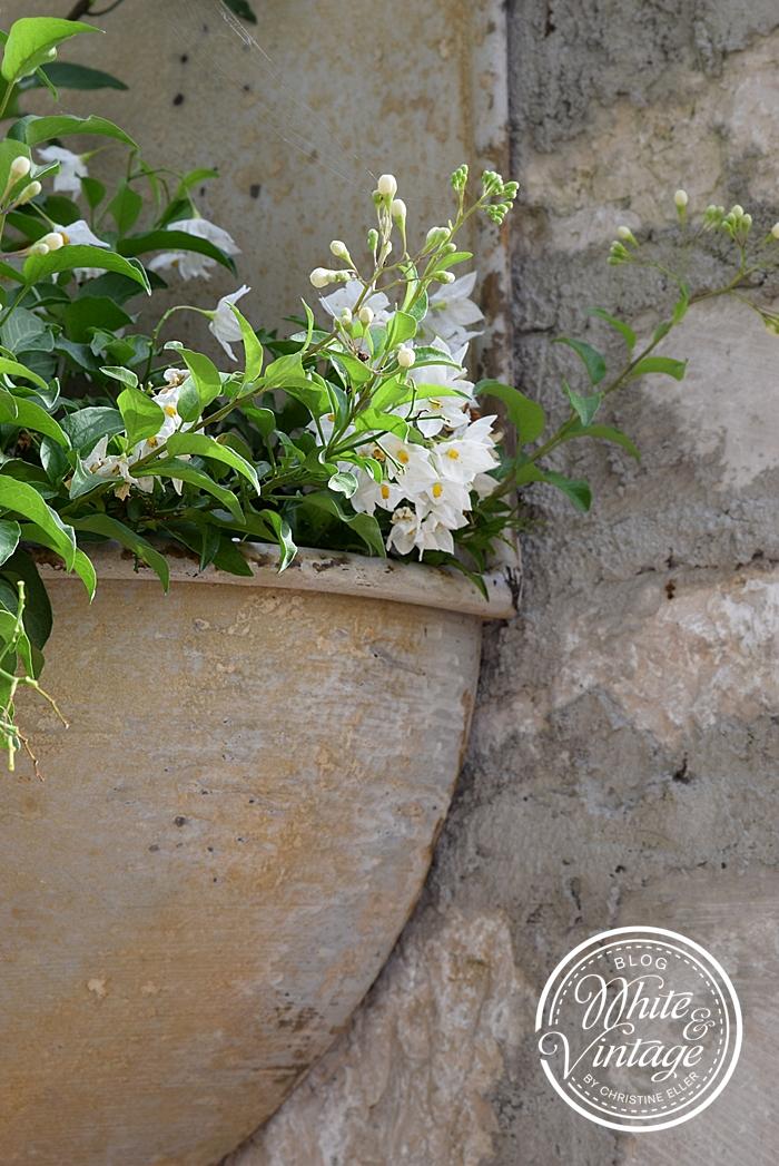 Ruinen-Gartenmauer aus Natursteinen bauen.