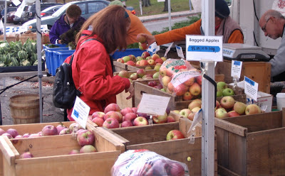 A woman shopping among bins of apples