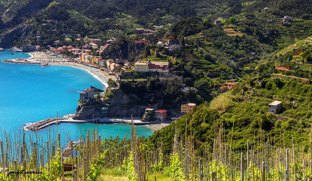 Monterosso, Cinque Terre, alla mare, sea, mer, méditérannée, Ligurie, Italie