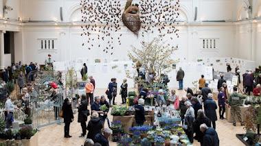 Feria de Plantas en Londres: RHS Early Spring Plant Fair 2017
