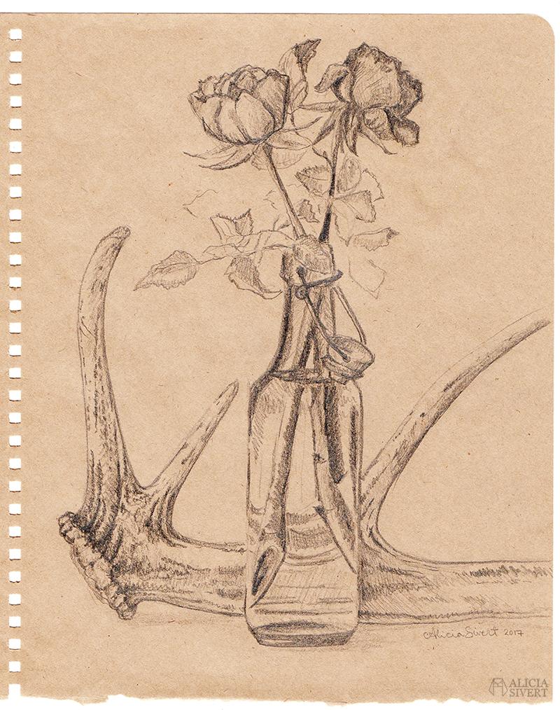 aliciasivert alicia sivert sivertsson antler antlers horn hjorthorn flaska bottle ros rosor roses drawing teckning sketch skiss konst art artist teckningar drawings blyerts