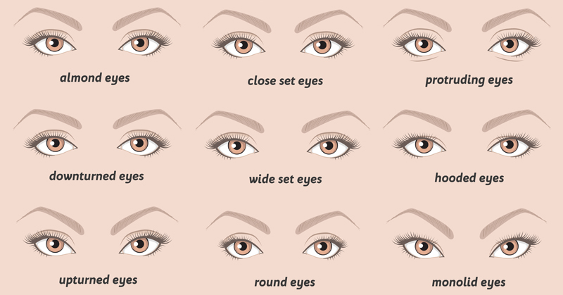shape of your eyes reveal your personality