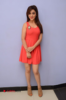 Actress Ragini Nandwani Pictures at Siddhartha Movie Teaser Launch  0156