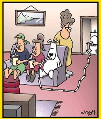 Some Gags: Tim Whyatt Cartoons