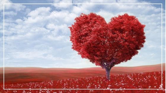 Trazer seu Amor Próprio de volta em 03 passos e com magia!