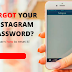 Forgot Password to Instagram