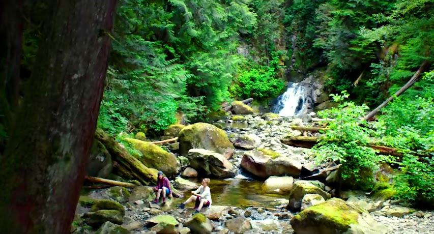 Στην Καρδιά του Δάσους Into The Forest