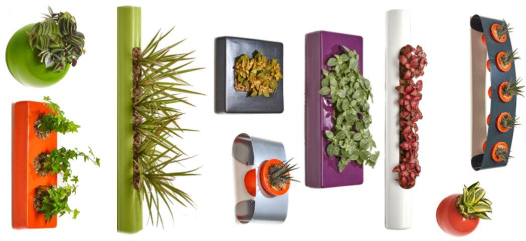 pflanzen an der wand mit flowerbox jetzt testen erdbeerchens testwelt. Black Bedroom Furniture Sets. Home Design Ideas