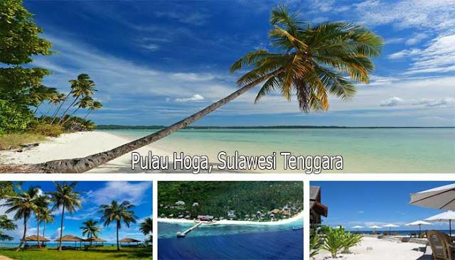 Menikmati Kecantikan Bawah Laut Pulau Hoga Di Wakatobi