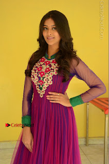 Actress Pooja Jhaveri Latest Stills in Purple Salwar Kameezt at Dwaraka Success Meet  0075.JPG