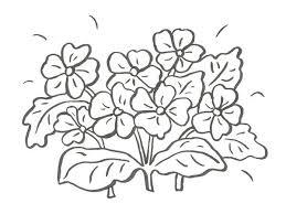 Riscos Desenhos Para Pintura Em Tecido Flores Como Fazer