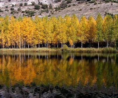 Laguna de Somolinos, Casa Rural Albendiego