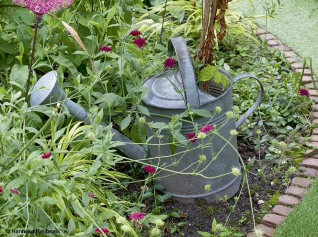 mazel de livre en livre mon futur jardin. Black Bedroom Furniture Sets. Home Design Ideas
