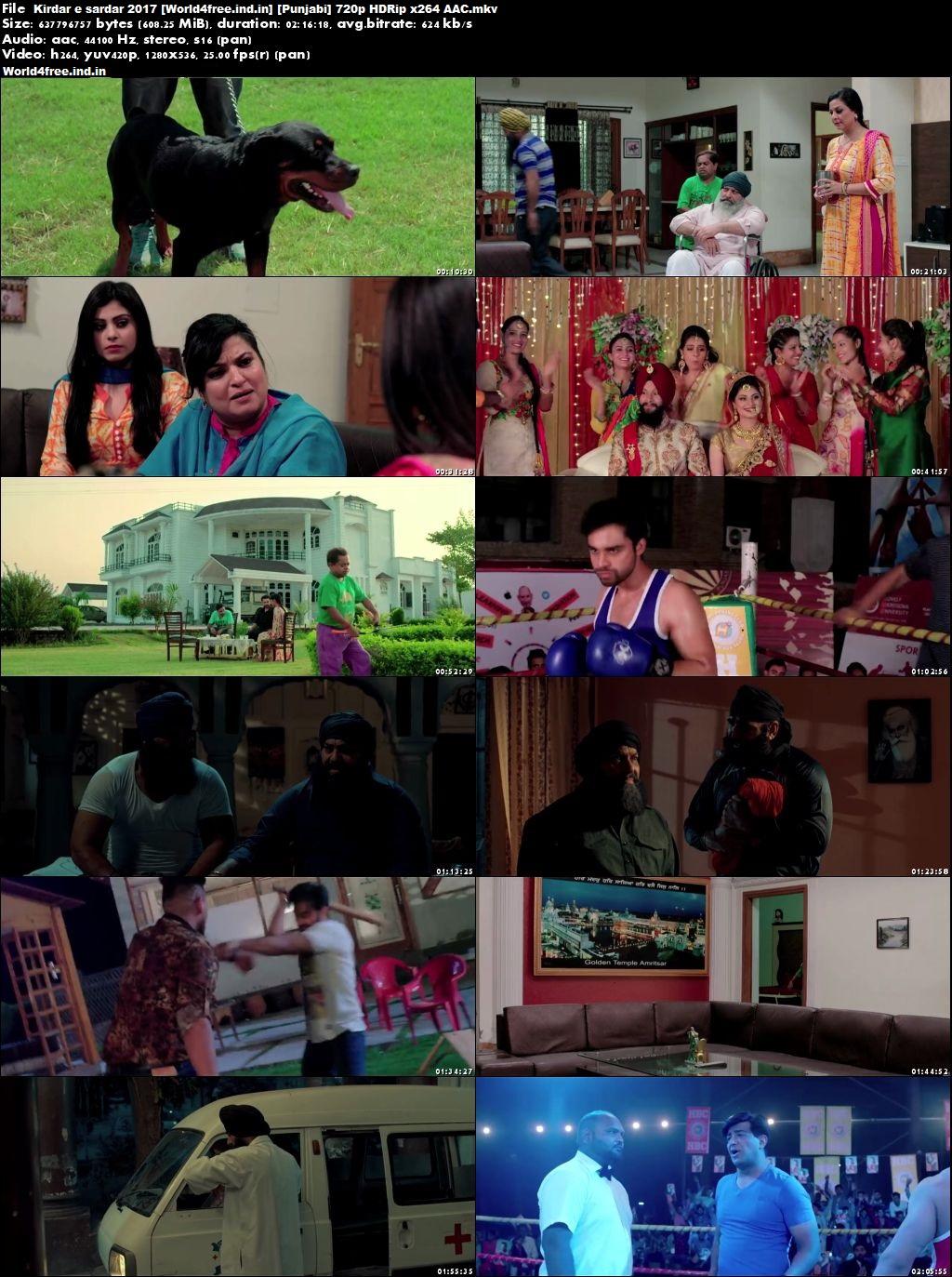 worldfree4u Kirdar-E-Sardar 2017 Full HDRip 720p Punjabi Movie Download