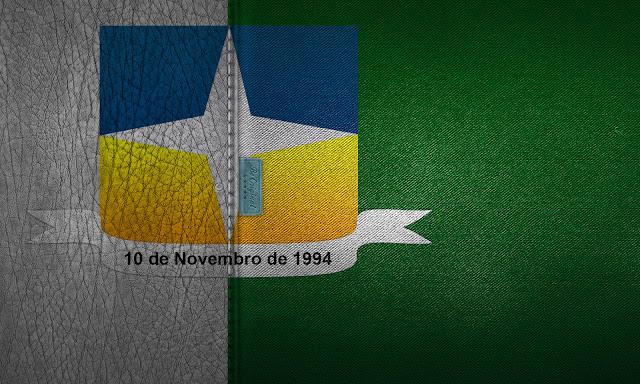Design da bandeira de Davinópolis em couro.