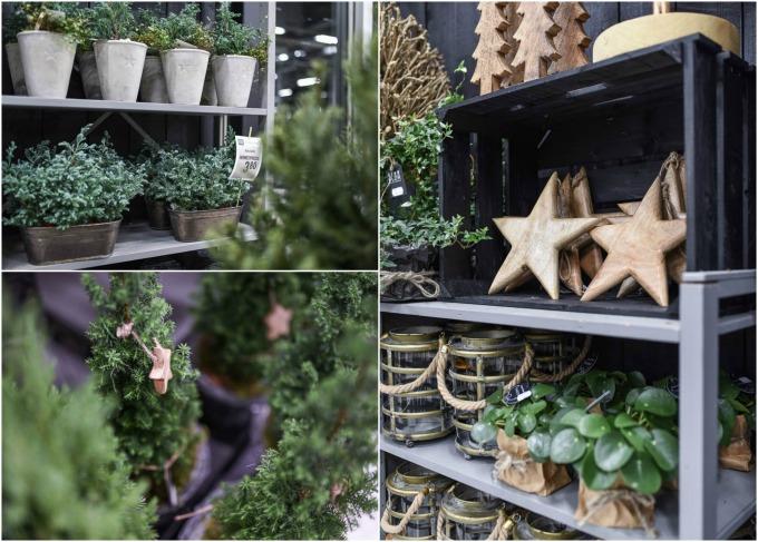 flör kauppila turku, kukka- ja puutarhaliike, joulukukat turku
