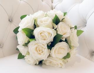 gambar bunga mawar indah 8