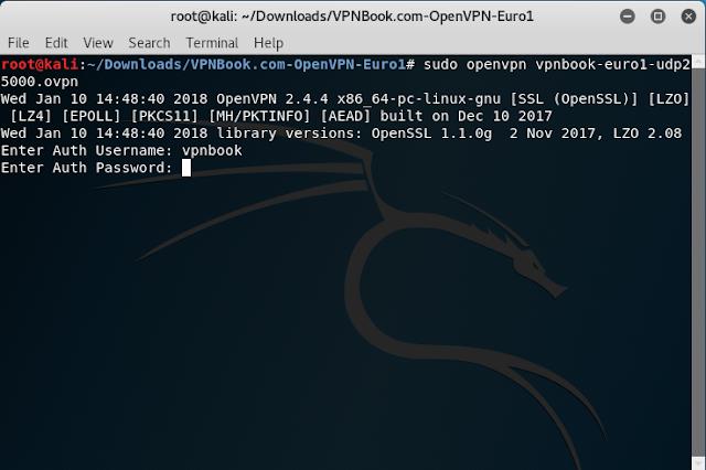 VPNBOOK, inserimento credenziali della VPN