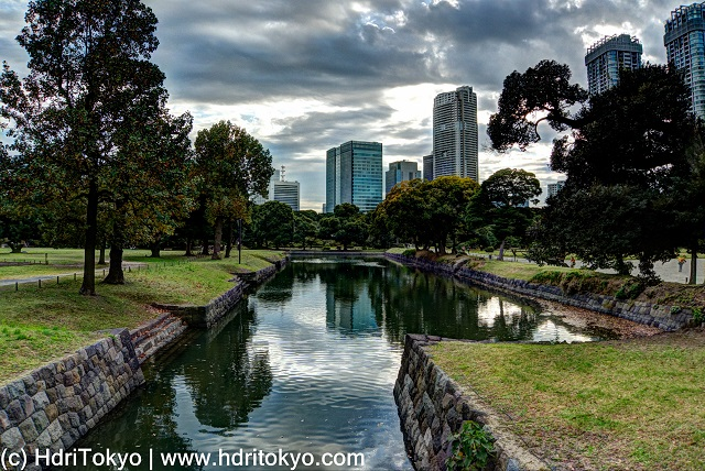 moat in Hamarikyu Gardens with high risel buildings in background. trees stand by the moat.