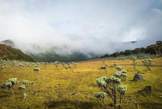 10 Gunung Terindah di Indonesia Ini Begitu Mempesona! Sudahkah Kamu Menjamah Puncaknya?