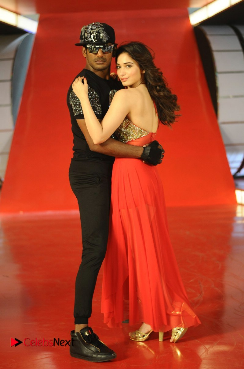 kaththi sandai tamil movie latest stills 0018   tamannah