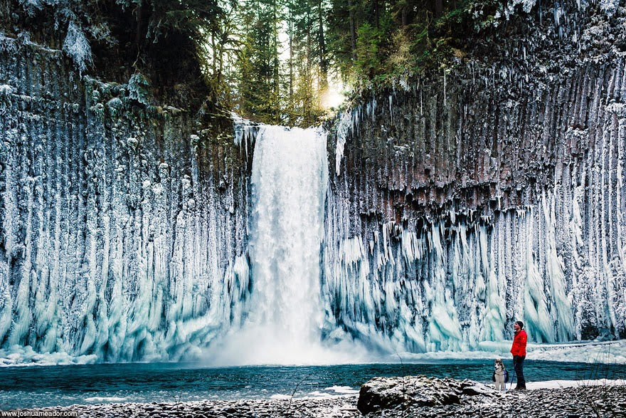 A breathtaking image of a man and his loyal dog, just dots compared to the giant Abiqua Falls located in Oregon, USA. - Tiny Humans Lost In The Majesty Of Nature
