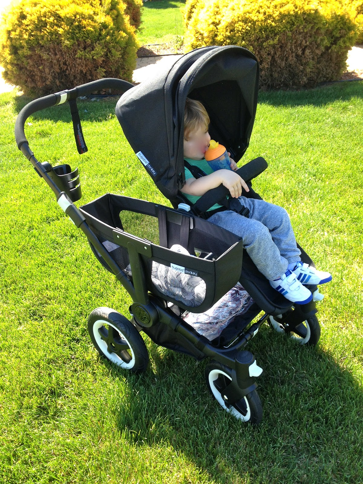 Roll Her Stroller Bugaboo Donkey All Black Edition Review