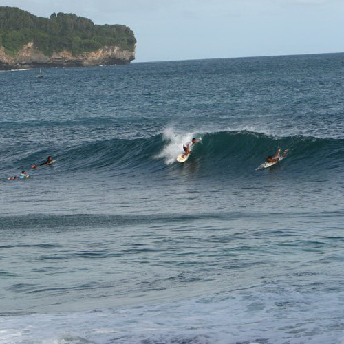 Tinuku Travel Srau beach in Pacitan present three surfing spots paradise on reef break waves and white sand snorkeling