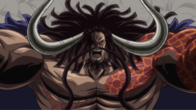 Kaido berkeinginan membentuk pasukan yang mengandalkan kekuatan buah iblis tipe Zoan