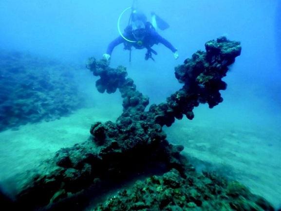 Un bateau des croisés découvert au larges des côtes d'Israël