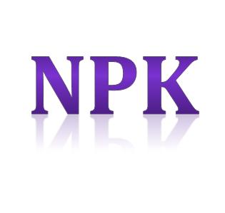 Syarat dan Cara Mendapatkan NPK