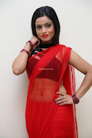 Aasma Syed in Red Saree Sleeveless Black Choli Spicy Pics ~  Exclusive Celebrities Galleries 099.jpg