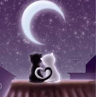 Kata Kata Kesepian Cinta Malam Hari