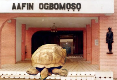world's oldest animal oyo state nigeria