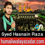 http://www.humaliwalayazadar.com/2016/09/syed-hasnain-raza-shah-nohay-2017.html