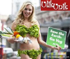 Contoh Bikini dari Sayuran