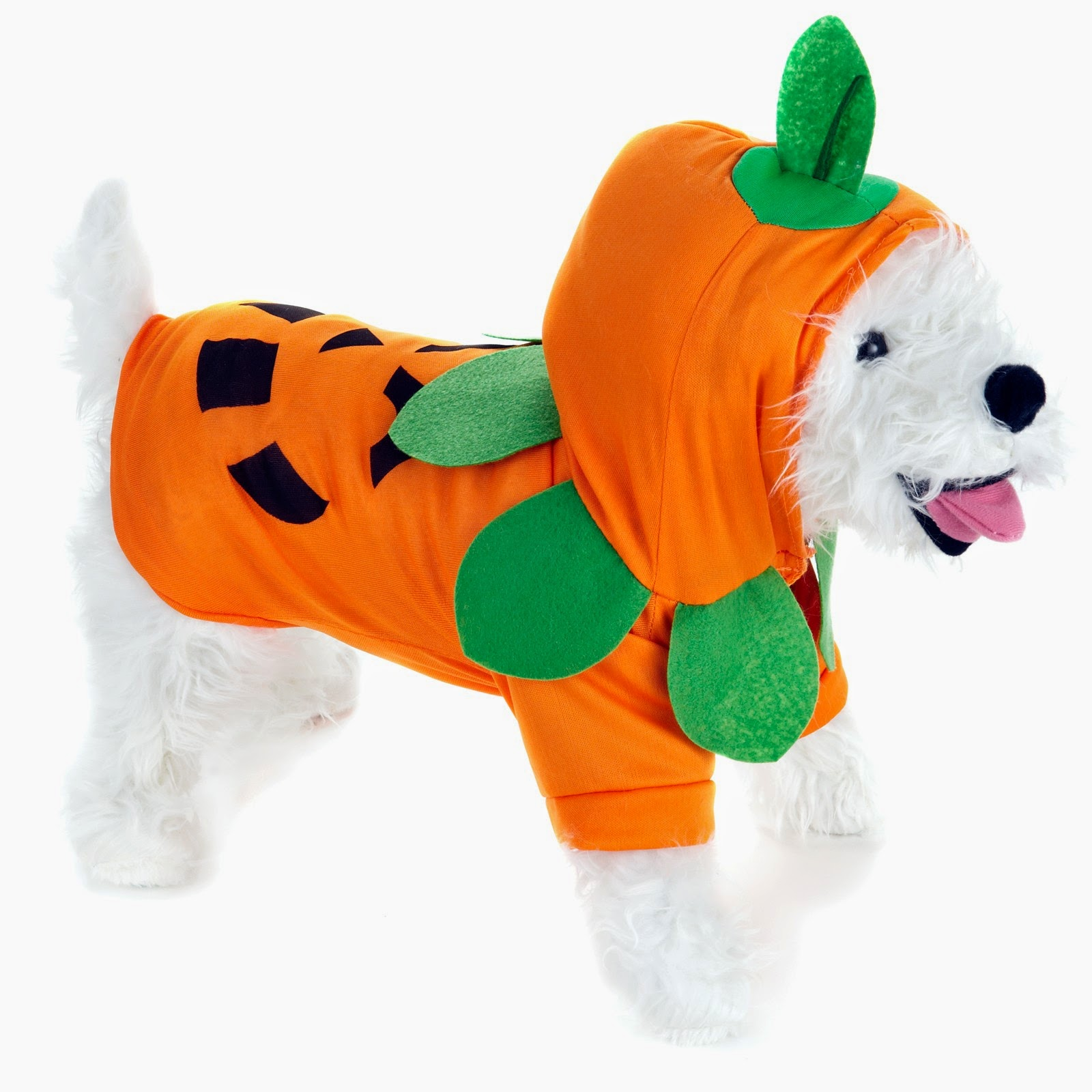 Rules of the Jungle: When do you need the large dog costumes?