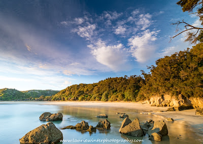 Beach Abel Tasman National Park Great Walk Anchorage Hut Sunrise