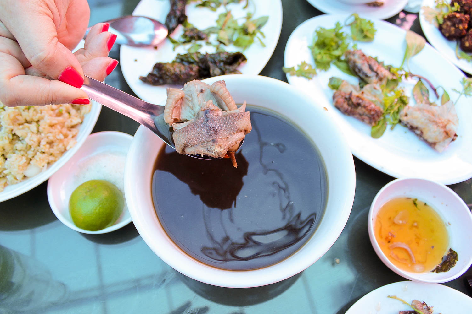 snake soup with snake meat