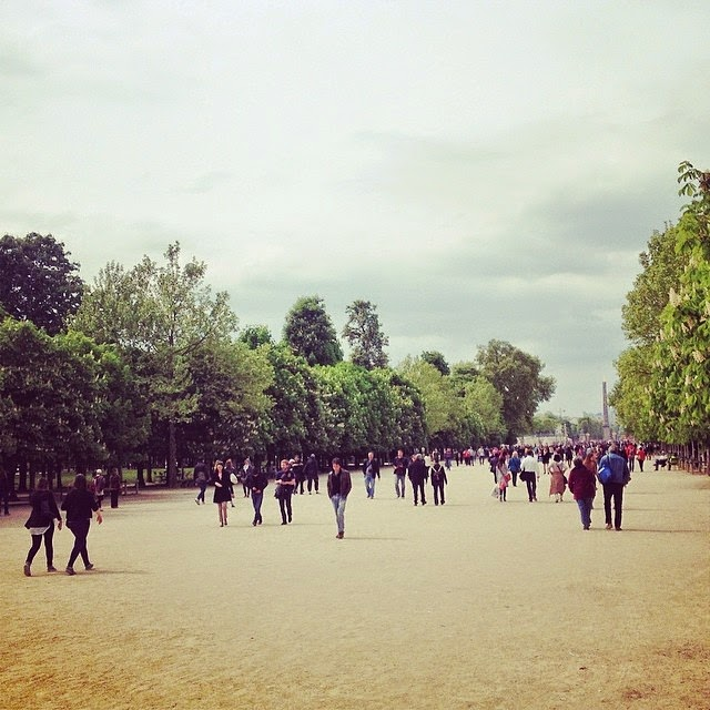 April in Paris, chestnuts in blossom - Instagram travel photos