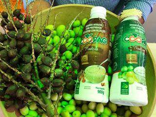 Cooperativa lança iogurte de licuri